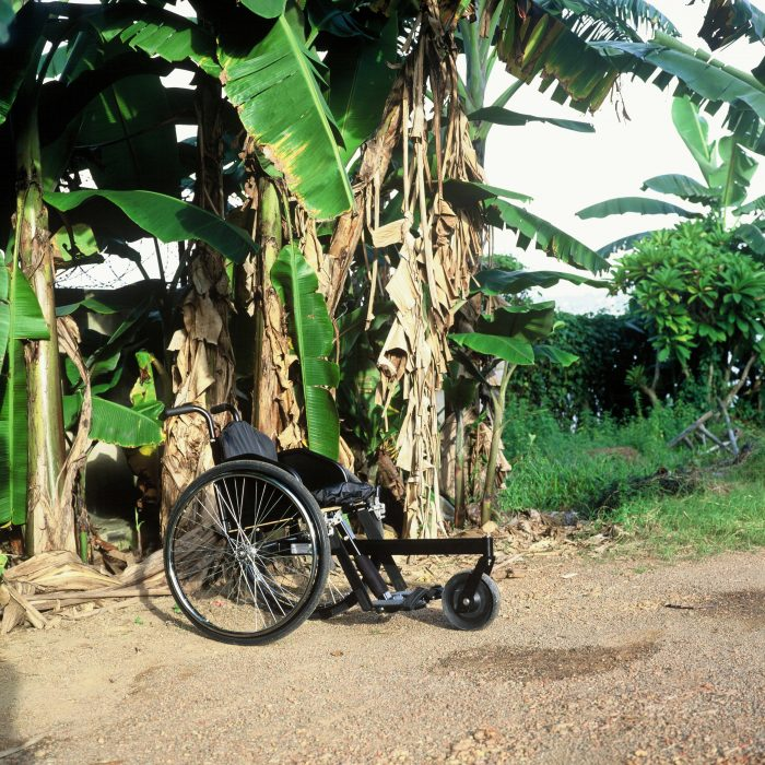 Wheelchair standing next to palm trees