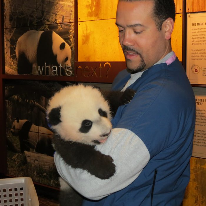 Rodriguez holds Bei Bei