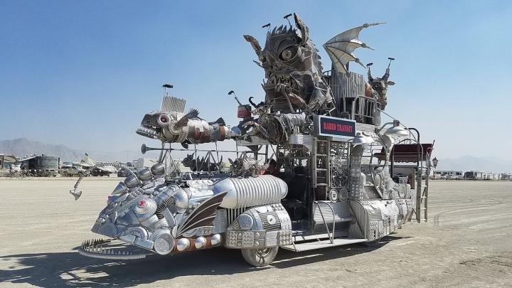 Rabid Transit by Duane Flatmo