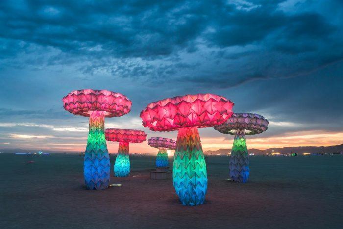Illuminated mushroom sculptures