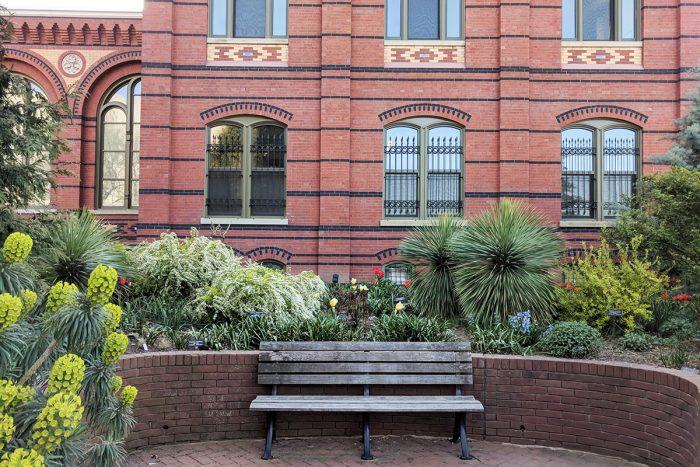 Bench in Ripley Garden
