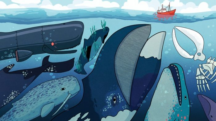 artist rendering of whales gathered beneath boat