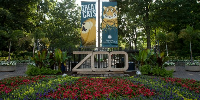 National Zoo meets rigorous standards for accreditation