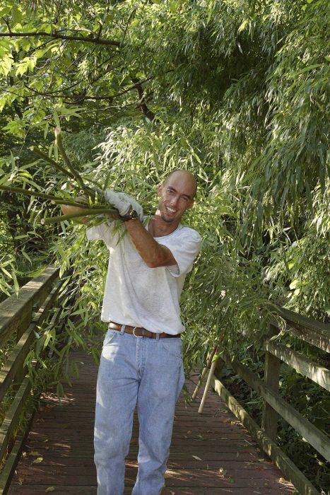 Maslanka on bridge with bamboo