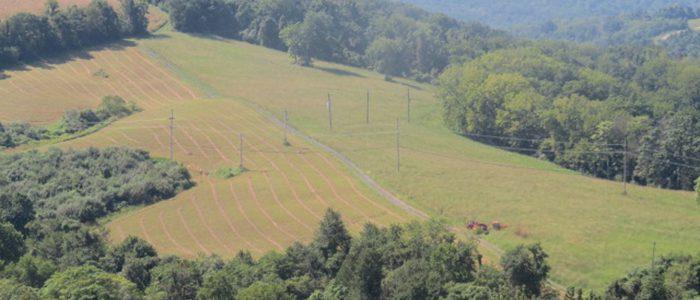 Mike Maslanka had a farm…