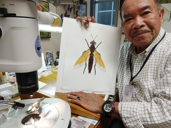 Vichai holding drawing of a fly