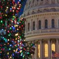 US Capitol with Christmas tree in foreground