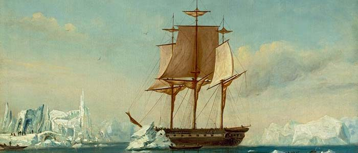 Backroom Stories: The graphic (art) tale of the U.S. Exploring Expedition's report