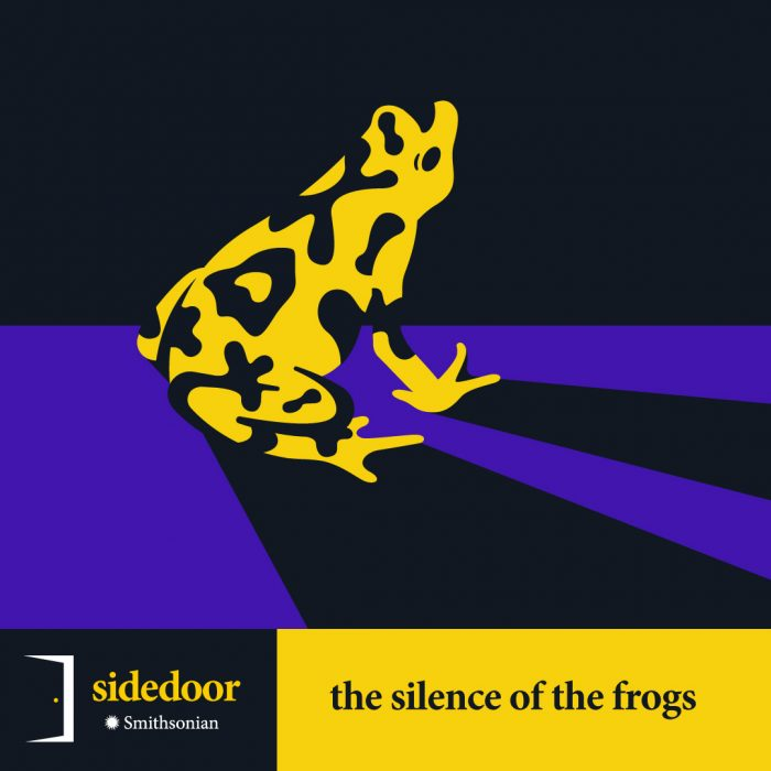 Sidedoor: The Silence of the Frogs