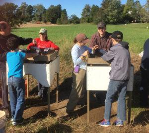 Citizen scientists at work