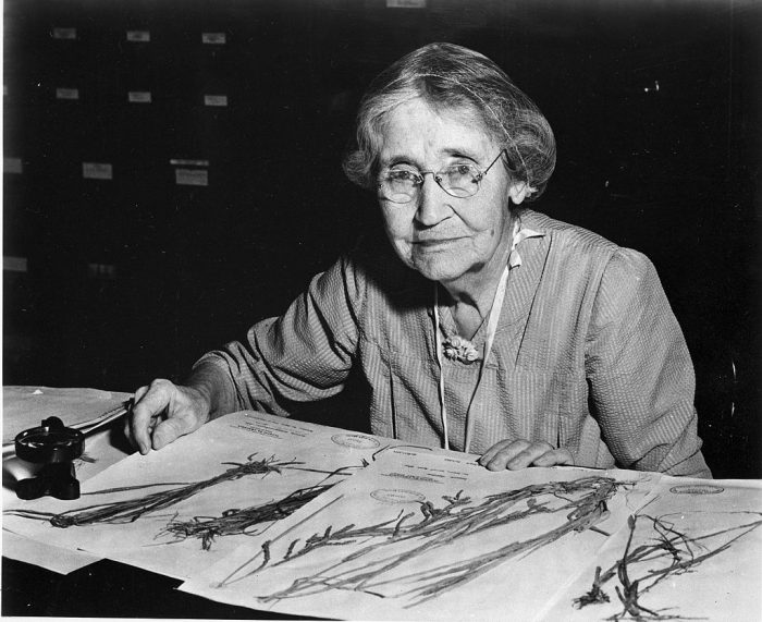 Black and white photo of elderly woman with botanical drawings