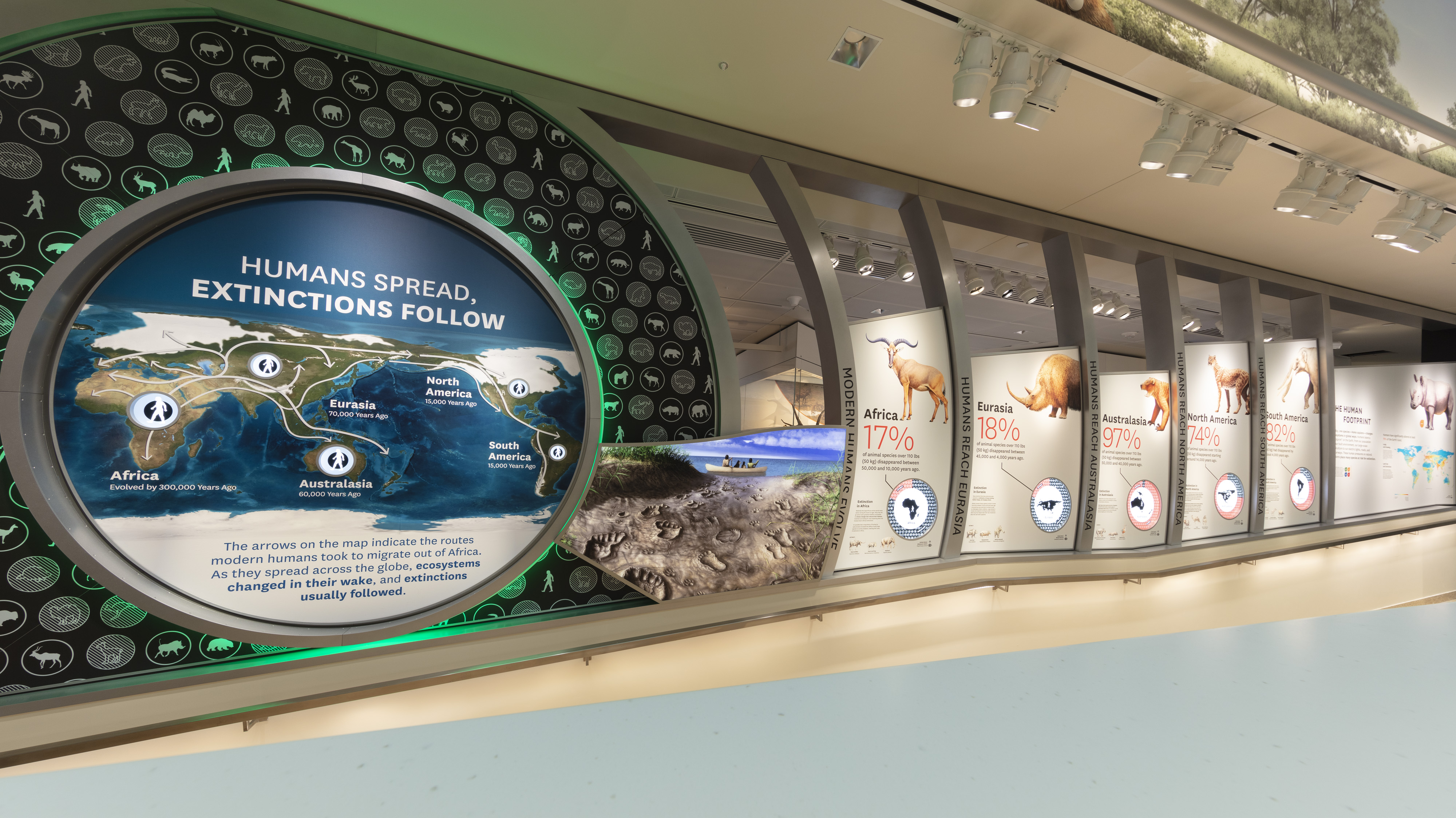 Gallery showing extinction events