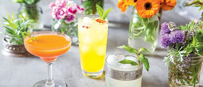 Prune the shrubs? No thanks, we'd rather drink them.