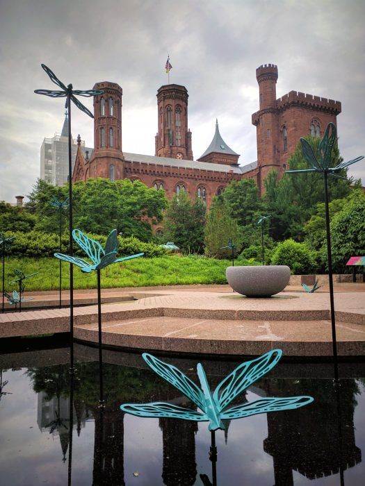 Dragonfly sculpture in Moongate Garden