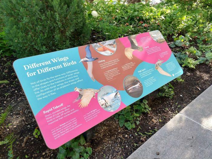 Sign describing bird wings