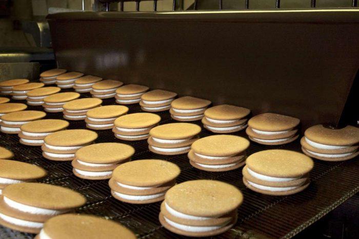 Cookies on conveyor belt