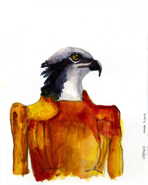 watercolor of humanoid osprey