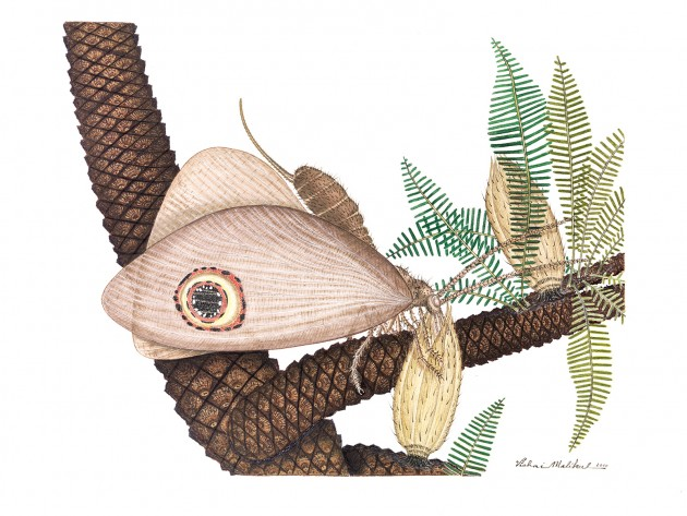 Artists rendering of ancient lacewing