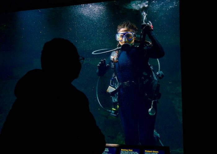 Scuba diver seen through glass window