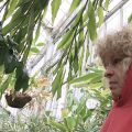 Resized photo of Sue Lutz in greenhouse