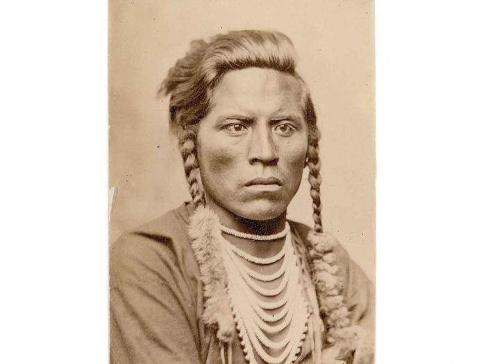 Photo of Crow scout Curly