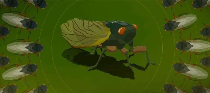 Sidedoor: Ode to Cicadas