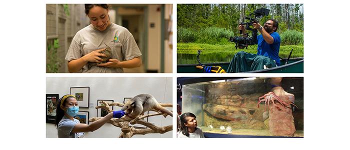 Why aren't Zoo and Aquarium professionals more diverse?